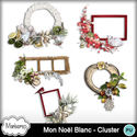 Msp_mon_noel_blanc_pv_cluster_small