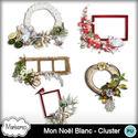 Msp_mon_noel_blanc_pv_cluster_small