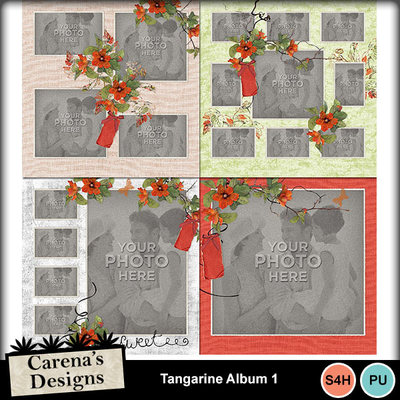 Tangarine-album-1