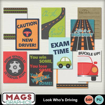 Mgx_mm_driving_jc