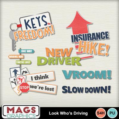 Mgx_mm_driving_wa