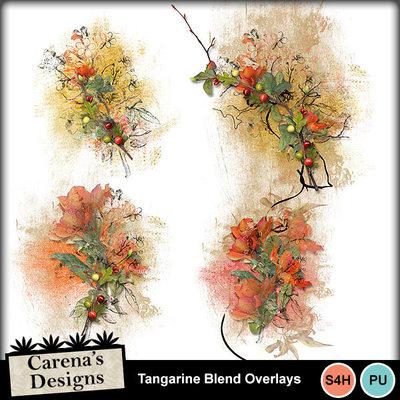 Tangarine-blend-overlays