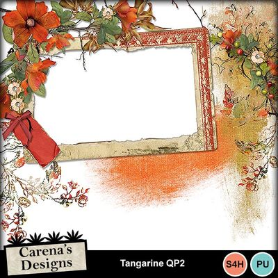 Tangarine-qp2