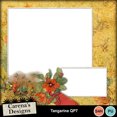 Tangarine-qp7