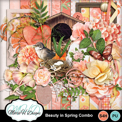 Beauty_in_spring_combo_01