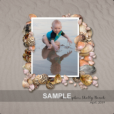 _shellybeach_layoutsample_1