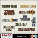 Mgx_mm_footballfevr_titles_small