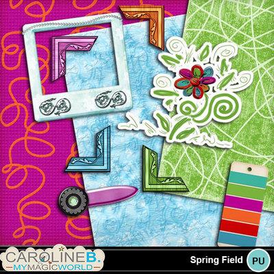 Spring-field_1