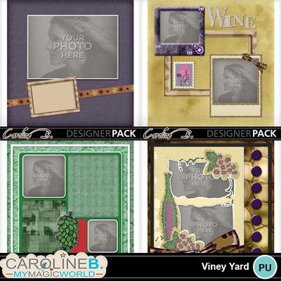 Viney-yard-12x12-album-005