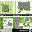 Baby-gaily-green-8x11-album-005_small