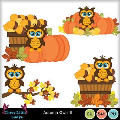 Autumn_owls_6--tll