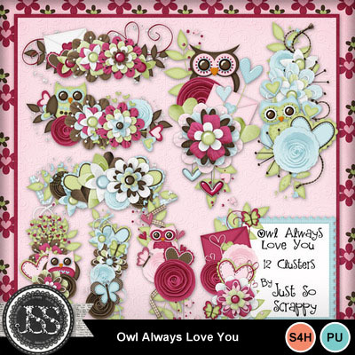 Owl_always_love_you_clusters