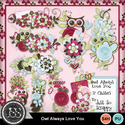 Owl_always_love_you_clusters_small
