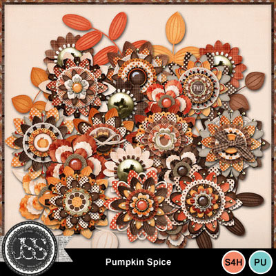 Pumpkin_spice_flowers