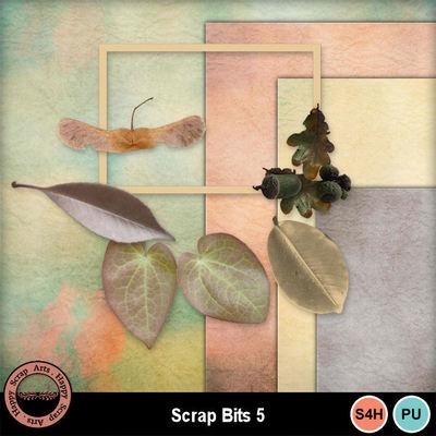 Scrapbits5
