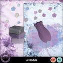 Lavendula__8__small
