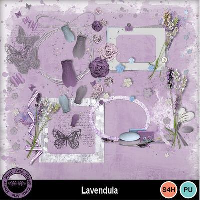 Lavendula__5_