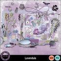 Lavendula__2__small