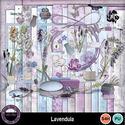 Lavendula__3__small