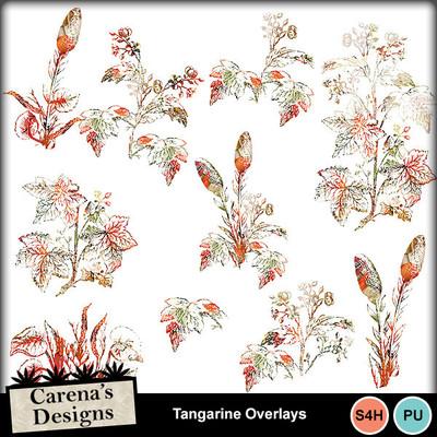 Tangarine-overlays