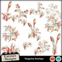 Tangarine-overlays_small