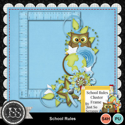 School_rules_cluster_frame