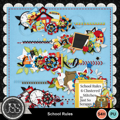 School_rules_cluster_stitches