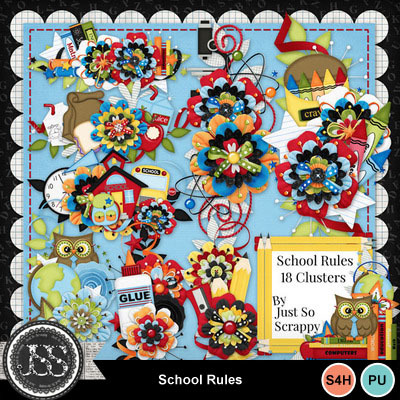 School_rules_clusters