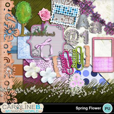 Spring-flowers_1