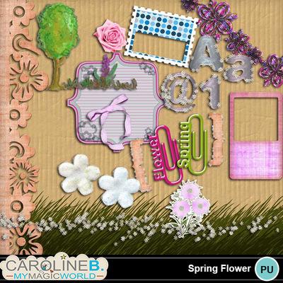 Spring-flowers_3