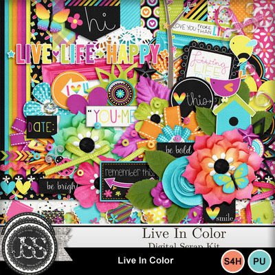 Live_in_color_kit
