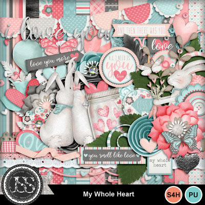 My_whole_heart_kit