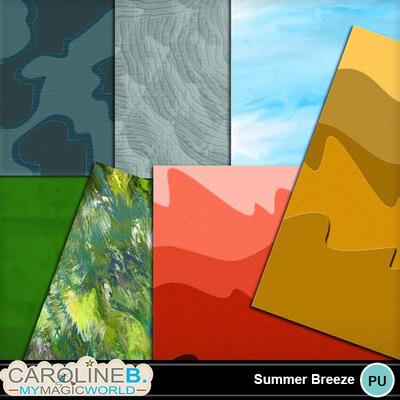 Summer-breeze_2