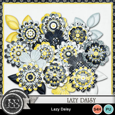 Lazy_daisy_flowers