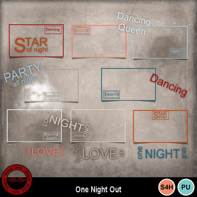 Onenightout__3_