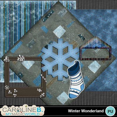 Winter-wonderland_1
