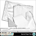 Special-paper-torn_1_small