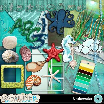 Underwater-pack_1
