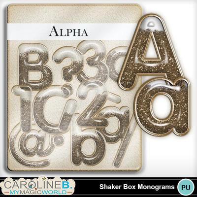 Shaker-box-alpha_1