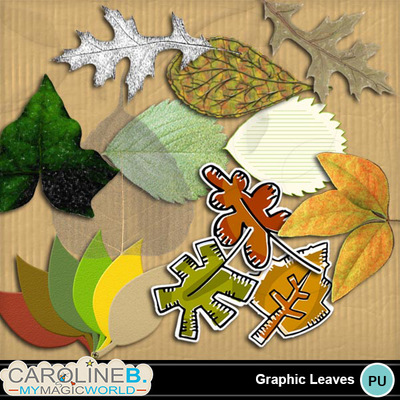 Graphic-leaves_1
