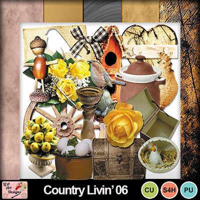Full_preview_country_livin__06