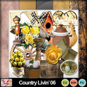 Full_preview_country_livin__06_small