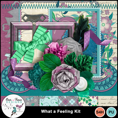 What_a_feeling_kit