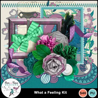 What_a_feeling_kit_ele