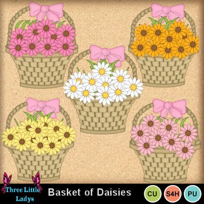 Basket_of_daisies--tll
