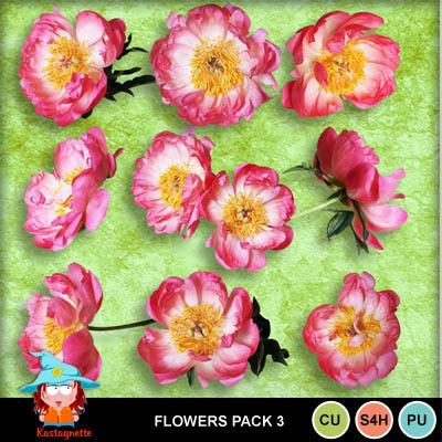 Kastagnette_flowers8pac3_pv