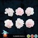 Kastagnette_flowerspack4_pv_small