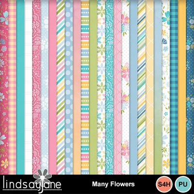 Manyflowers_2