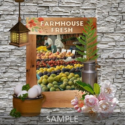 At_the_farmhouse_frames-02