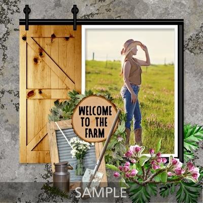 At_the_farmhouse_frames-03